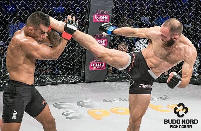 MMA är min hobby, jobb, livsstil, vatten och mat på bordet